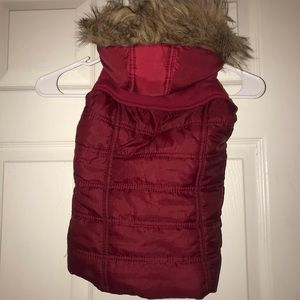 Beverly hill polo club Puffer vest fur hoodie 3T